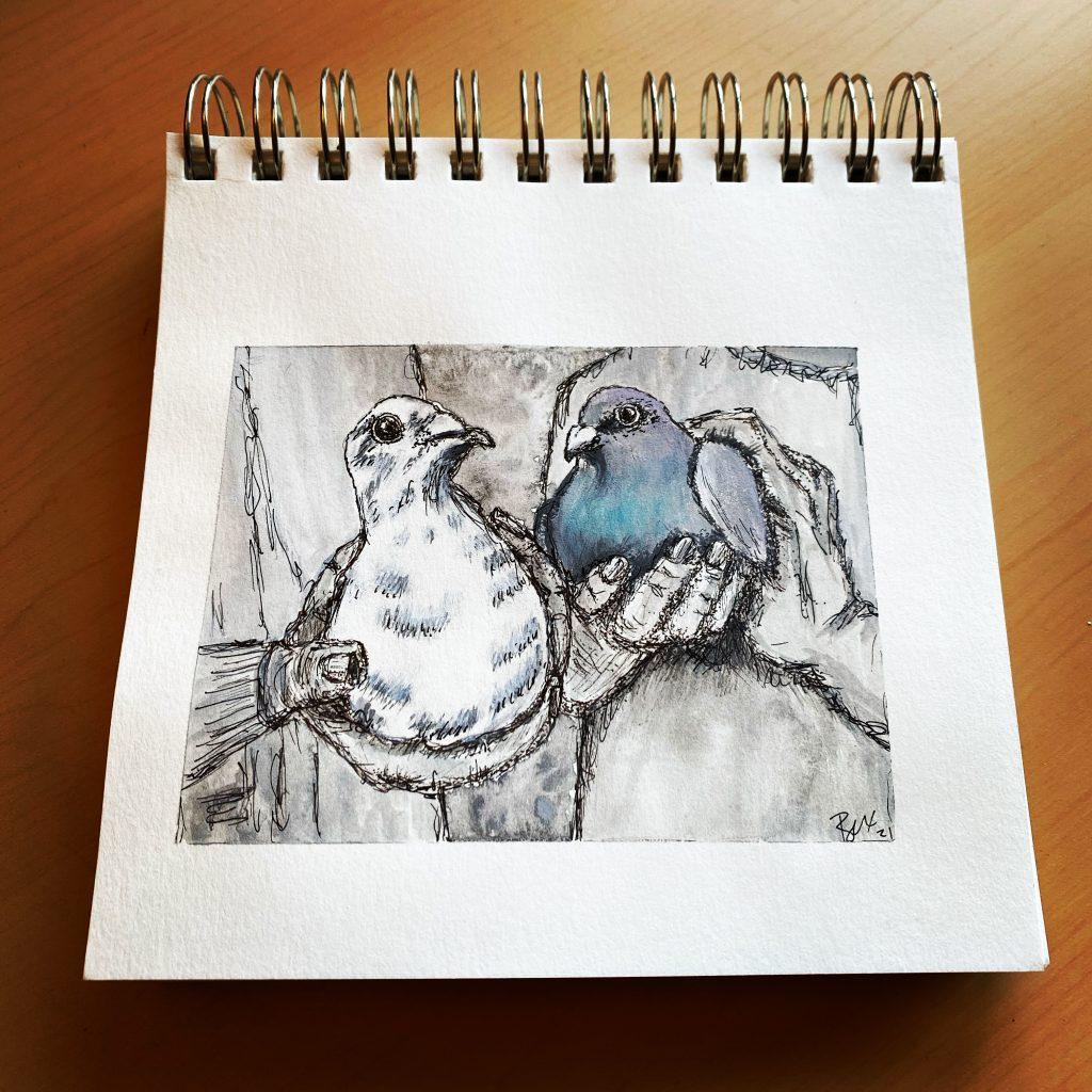 Abby & Gibbs Homing Pigeons