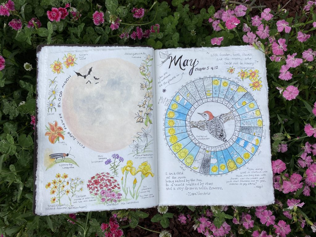 May Phenology Wheel and Nature Journal