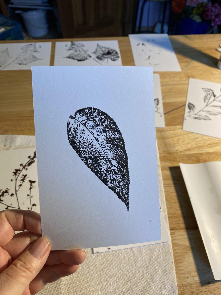 A leaf print