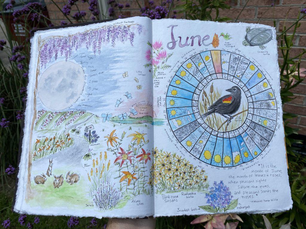 June 2021 Nature Journal & Phenology Wheel