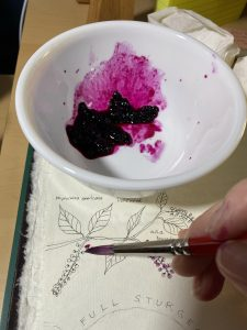 Pokeweed berry paint