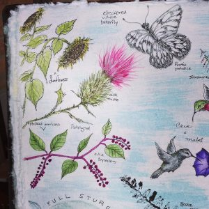August nature journal